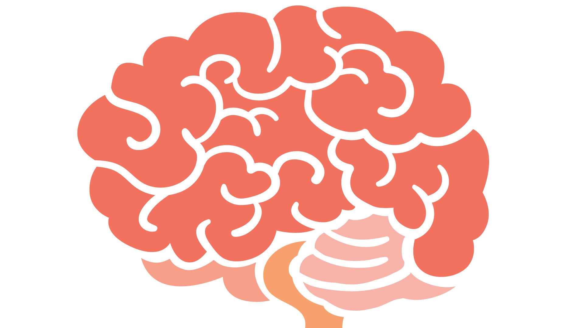brain-01